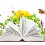 مدیریت دانش و بخش دولتی:پایان نامه درمورد ابعاد مدیریت دانش