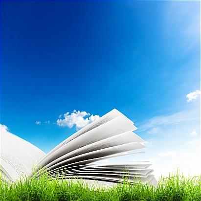 ارزیابی توسعه پایدار روستایی با رویکرد سیستمی- قسمت ۳۶