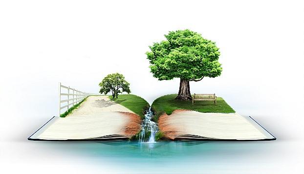 دسته بندی علمی – پژوهشی :  ارزیابی توسعه پایدار روستایی با رویکرد سیستمی- قسمت ۸