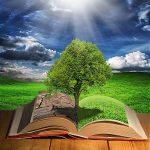 دسته بندی علمی – پژوهشی :  ارزیابی توسعه پایدار روستایی با رویکرد سیستمی- قسمت ۵